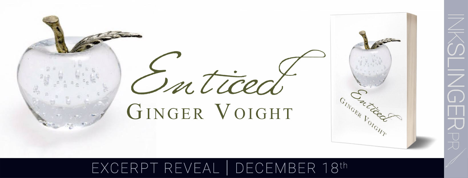 Enticed_excerpt reveal