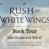 Tour Banner White Wings