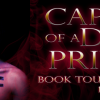 captive-of-a-dark-prince-tour-banner_orig