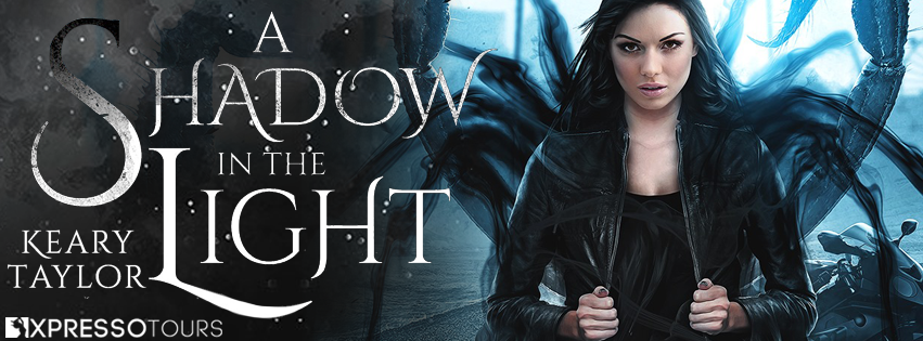 A Shadow in the Light Reveal Banner