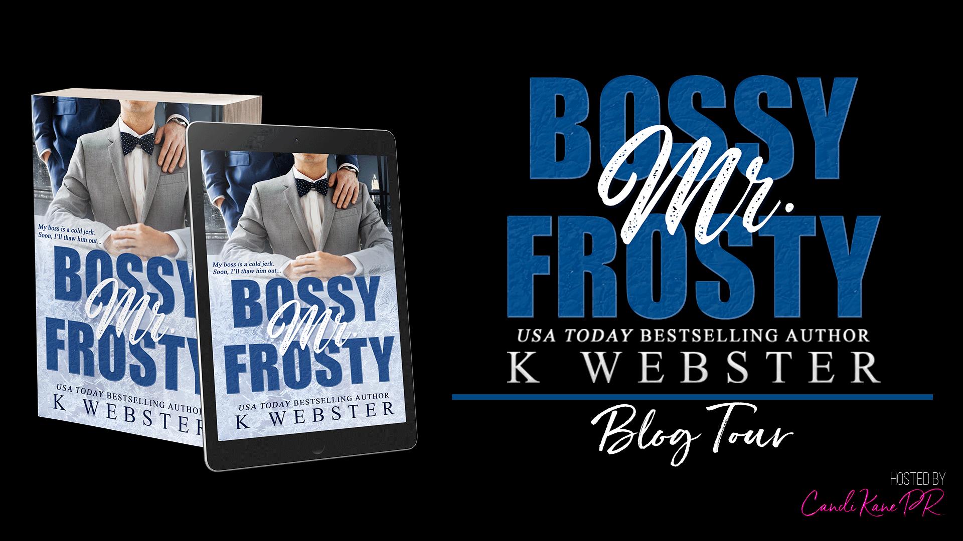 Bossy Mr. Frosty BT Banner