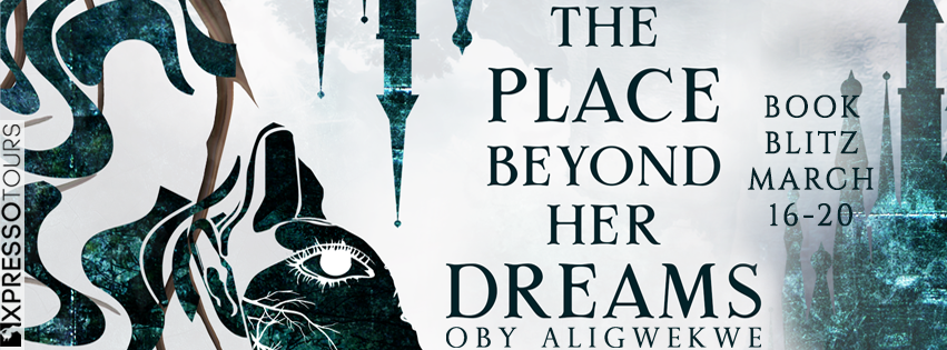 The Place Beyond Her Dreams Blitz Banner