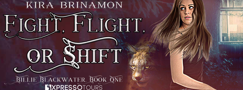 Fight Flight or Shift Reveal Banner