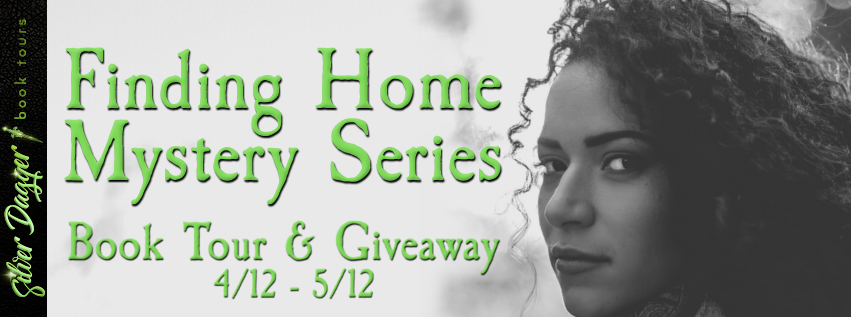 finding home mystery series banner