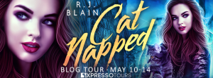 Catnapped Tour Banner