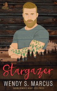 stargazer + ebook + cover