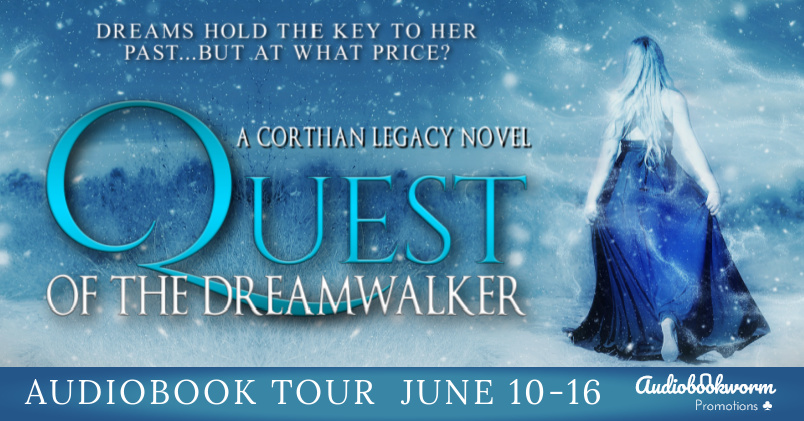 Quest of the Dreamwalker Banner (1)