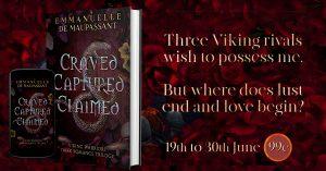 dark viking romance