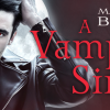 A Vampires Sin Blitz Banner