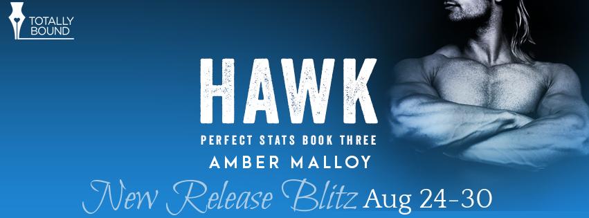Hawk Banner